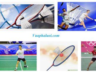Cách chơi tốt môn cầu lông
